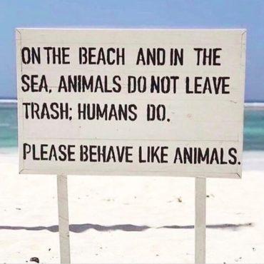 Meeresverschmutzung Quotes