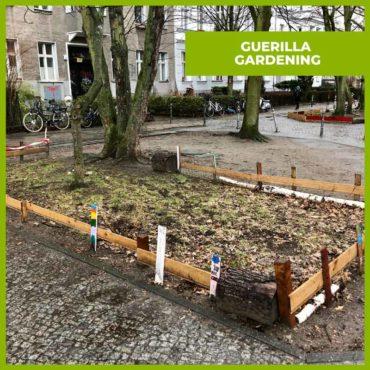 Guerilla Urban Gardening